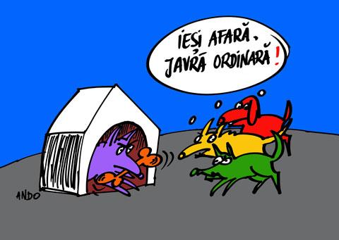 ANDOgrafia Zilei - Motivaţie / miercuri 19 ianuarie 2011