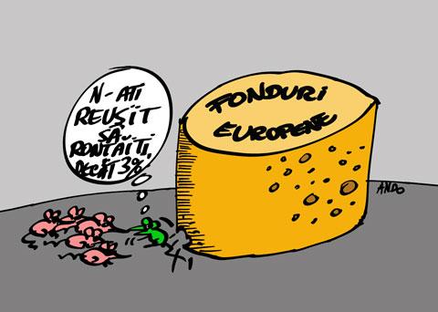 ANDOgrafia Zilei - Mare brânză / marţi 26 iulie 2011