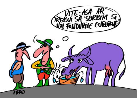 ANDOgrafia Zilei - Principiu de absorbţie / vineri 09 decembrie 2011